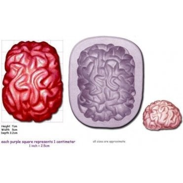 Large Brain - Cake Decorating Silicone Mould