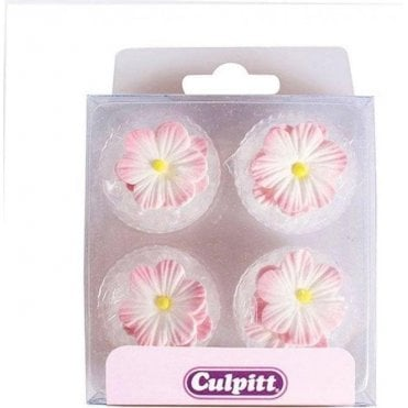 Pink Daisies Edible Sugar Decoration - 12 pieces