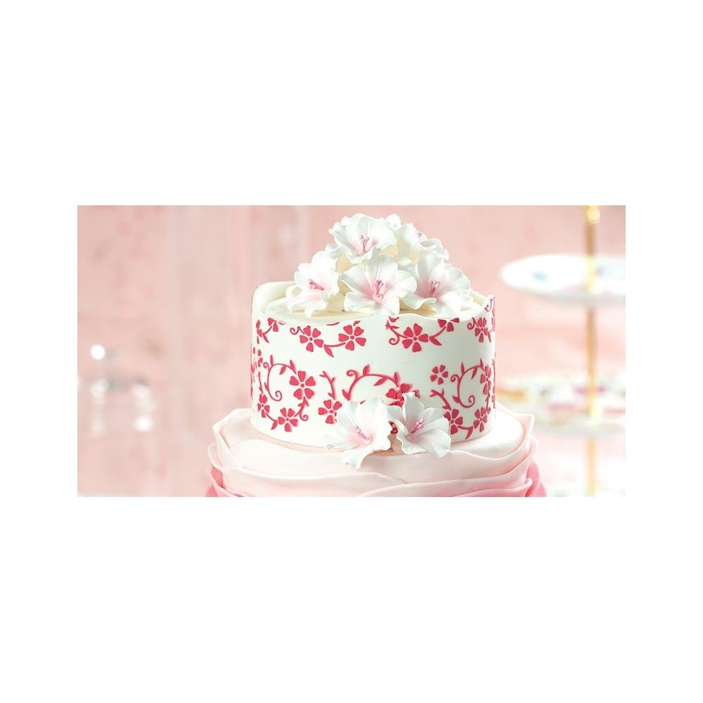 Floral spirals cake decorating stencil 7 x 30cm for 30 cake decoration