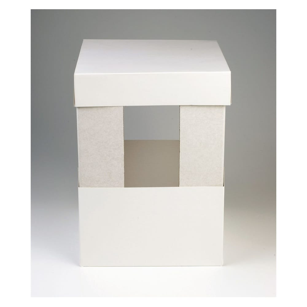 Cake Box Extensions Uk